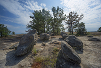 Arabia Mountain, GA